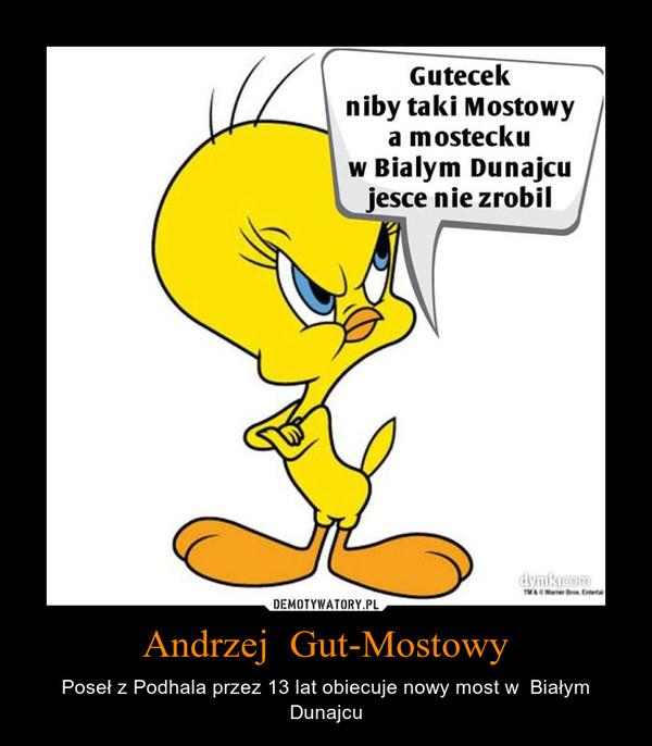 Andrzej  Gut-Mostowy – Poseł z Podhala przez 13 lat obiecuje nowy most w  Białym Dunajcu