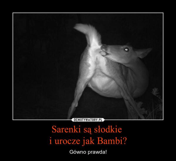 Sarenki są słodkie i urocze jak Bambi? – Gówno prawda!