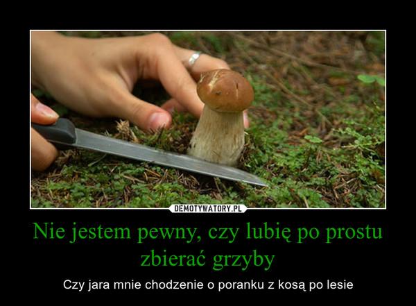 Nie jestem pewny, czy lubię po prostu zbierać grzyby – Czy jara mnie chodzenie o poranku z kosą po lesie