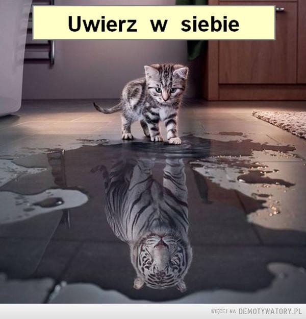 Uwierz w siebie –