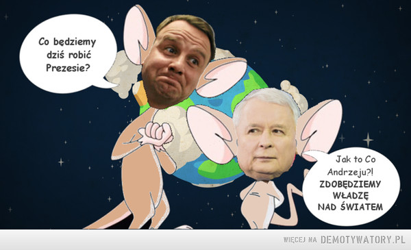 Pinky and the brain –