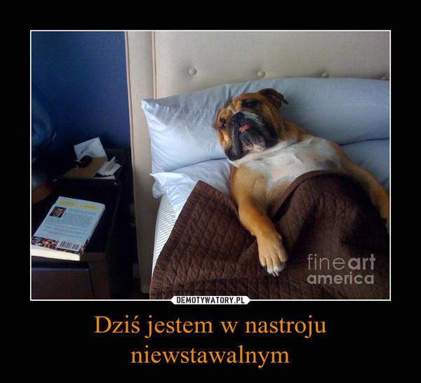 1452275701_rienyl_600.jpg