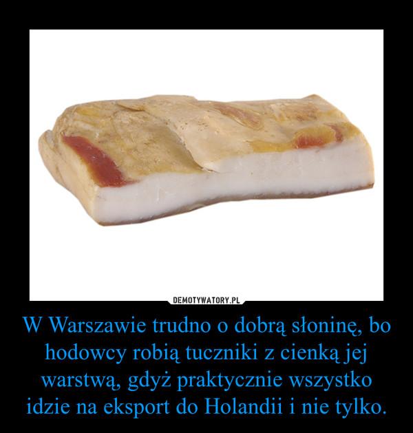 W Warszawie trudno o dobrą słoninę, bo hodowcy robią tuczniki z cienką jej warstwą, gdyż praktycznie wszystko idzie na eksport do Holandii i nie tylko. –