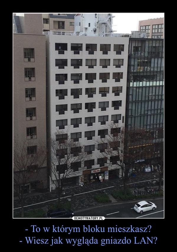 - To w którym bloku mieszkasz?- Wiesz jak wygląda gniazdo LAN? –
