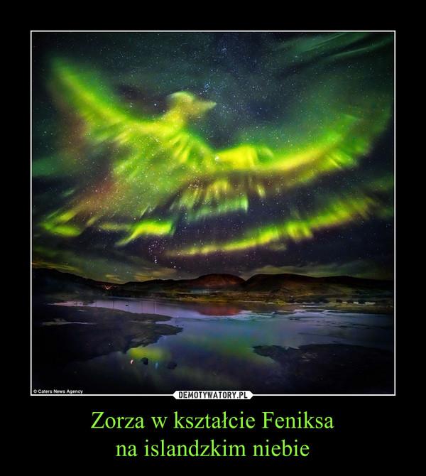 Zorza w kształcie Feniksana islandzkim niebie –