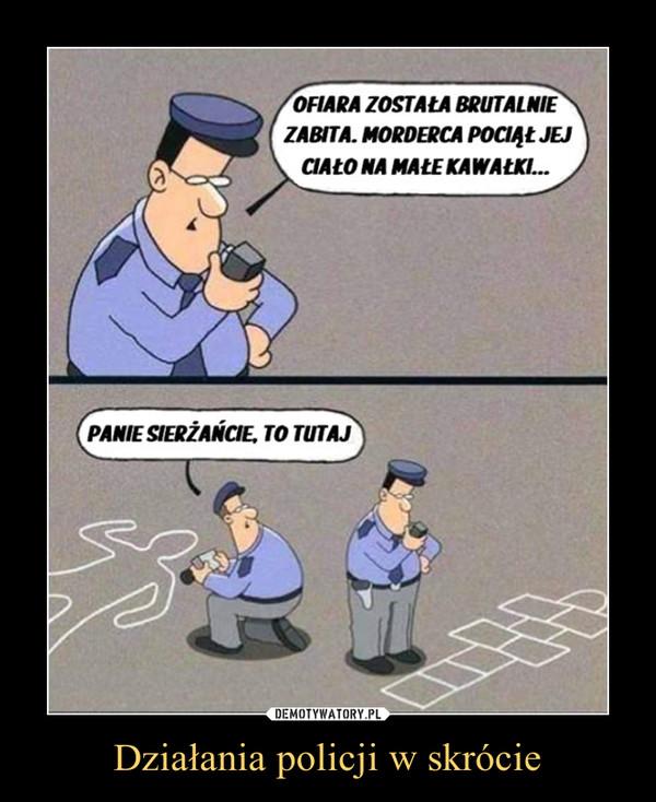 Działania policji w skrócie –