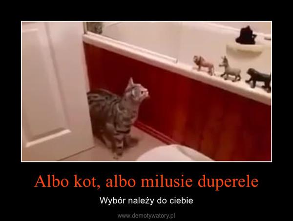 Albo kot, albo milusie duperele – Wybór należy do ciebie