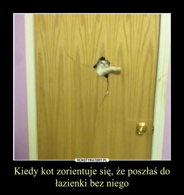 Kiedy kot zorientuje się, że poszłaś do łazienki bez niego –