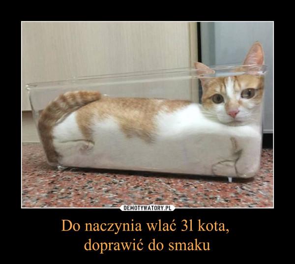 Do naczynia wlać 3l kota, doprawić do smaku –