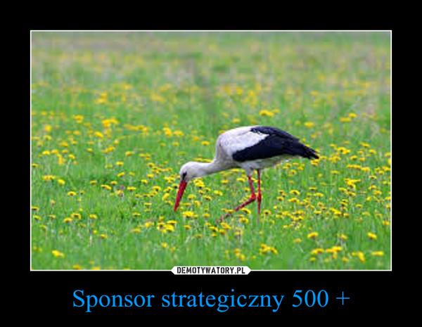Sponsor strategiczny 500 + –
