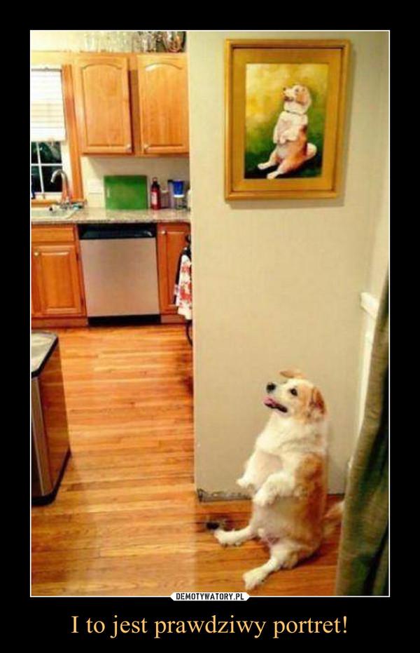 I to jest prawdziwy portret! –
