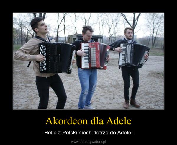 Akordeon dla Adele – Hello z Polski niech dotrze do Adele!