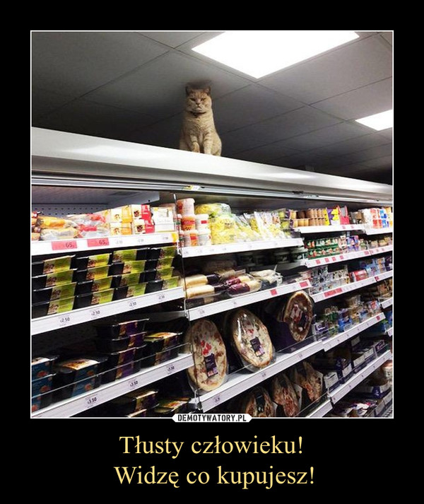 Tłusty człowieku! Widzę co kupujesz! –