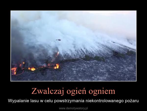 Zwalczaj ogień ogniem – Wypalanie lasu w celu powstrzymania niekontrolowanego pożaru
