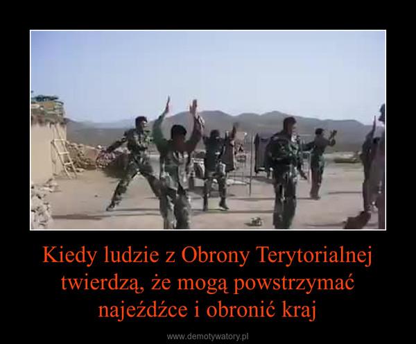 Kiedy ludzie z Obrony Terytorialnej twierdzą, że mogą powstrzymać najeźdźce i obronić kraj –