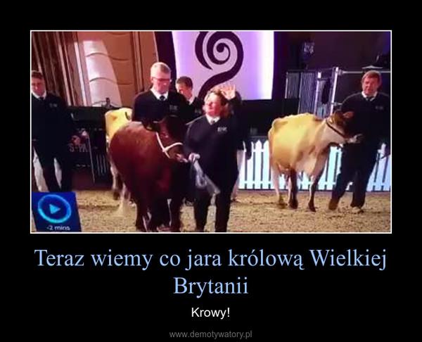 Teraz wiemy co jara królową Wielkiej Brytanii – Krowy!