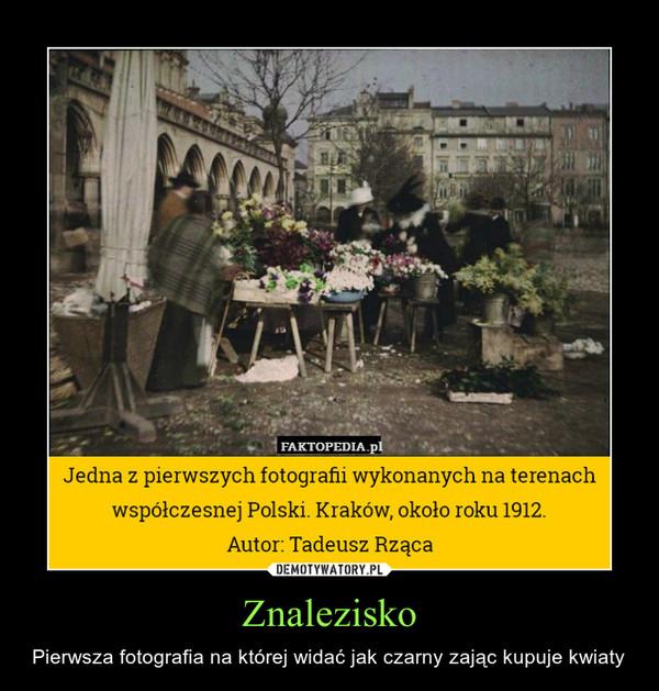 Znalezisko – Pierwsza fotografia na której widać jak czarny zając kupuje kwiaty