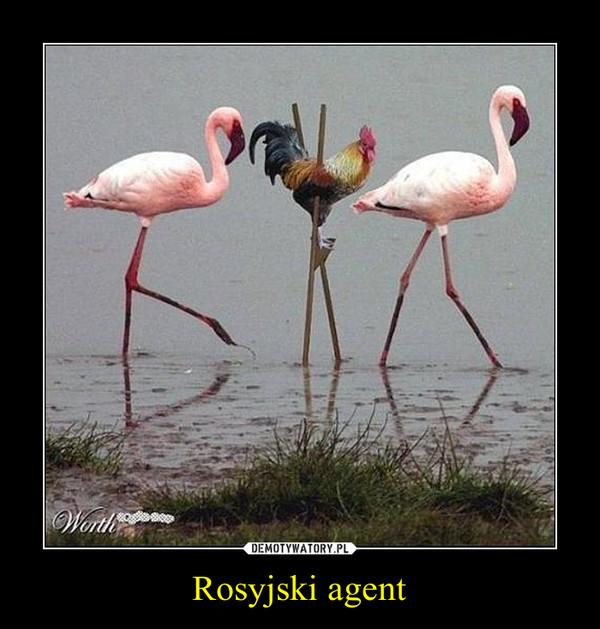 Rosyjski agent –