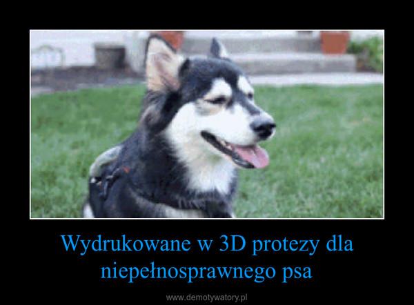 Wydrukowane w 3D protezy dla niepełnosprawnego psa –