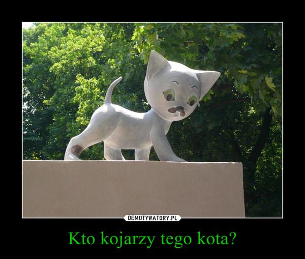 Kto kojarzy tego kota? –