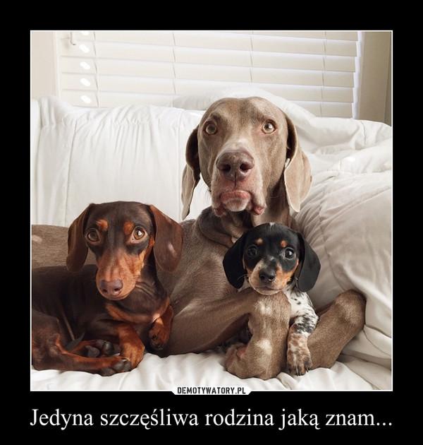 Jedyna szczęśliwa rodzina jaką znam... –