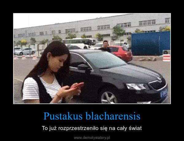 Pustakus blacharensis – To już rozprzestrzeniło się na cały świat