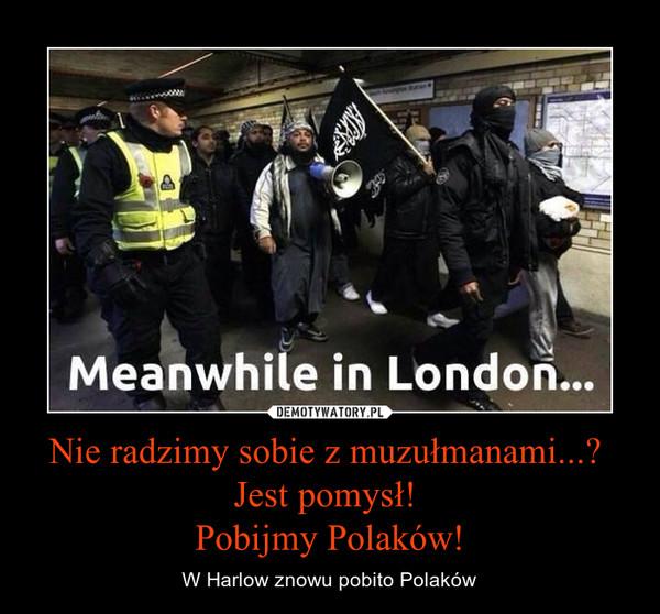 Nie radzimy sobie z muzułmanami...? Jest pomysł! Pobijmy Polaków! – W Harlow znowu pobito Polaków
