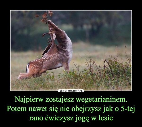 Najpierw zostajesz wegetarianinem.Potem nawet się nie obejrzysz jak o 5-tej rano ćwiczysz jogę w lesie –