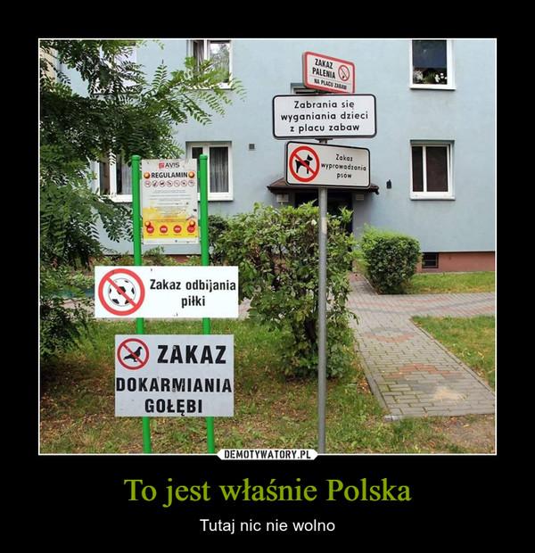 To jest właśnie Polska – Tutaj nic nie wolno ZAKAZ PALENIAZabrania się wyganiania dzieci z placu zabawZakaz wyprowadzania psówREGULAMINZakaz odbijania piłkiZAKAZ DOKARMIANA GOŁĘBI