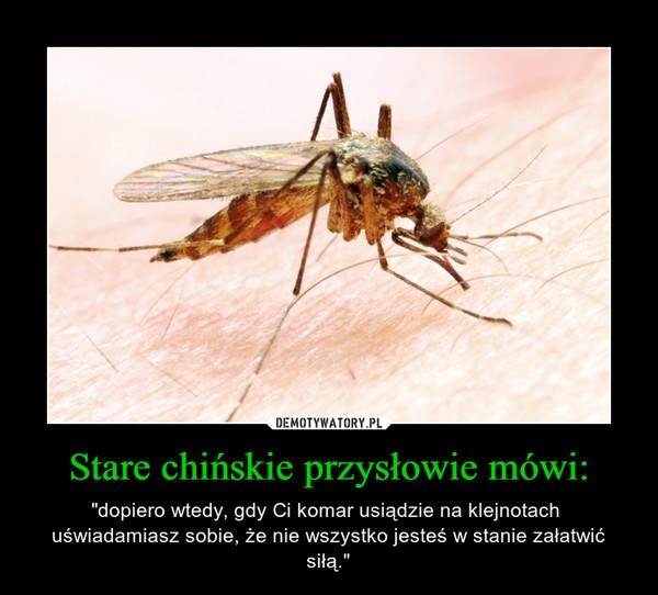 """Stare chińskie przysłowie mówi: – """"dopiero wtedy, gdy Ci komar usiądzie na klejnotach  uświadamiasz sobie, że nie wszystko jesteś w stanie załatwić siłą."""""""