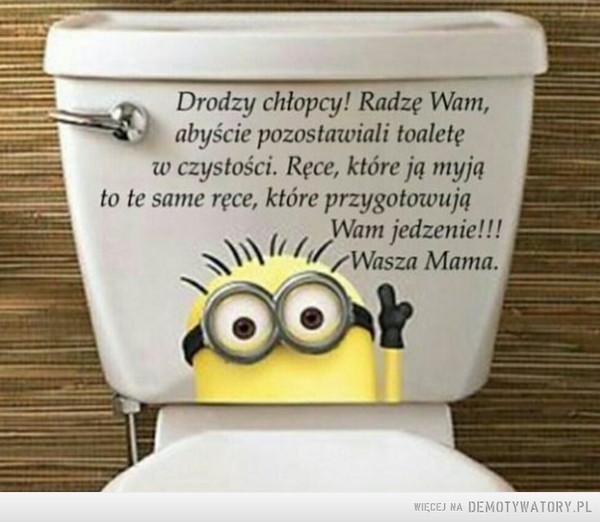 Przekonujące –  Drodzy chłopcy! Radzę Wam, abyście pozostawiali toaletę w czystości. Ręce, które ją myją - to te same ręce, które przygotowują Wam jedzenie! Wasza Mama.