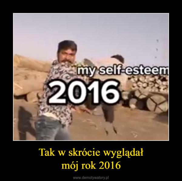 Tak w skrócie wyglądałmój rok 2016 –