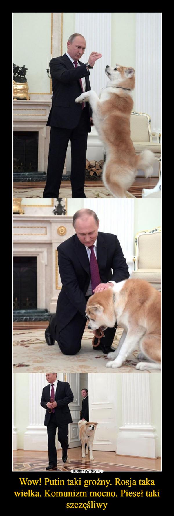 Wow! Putin taki groźny. Rosja taka wielka. Komunizm mocno. Pieseł taki szczęśliwy –