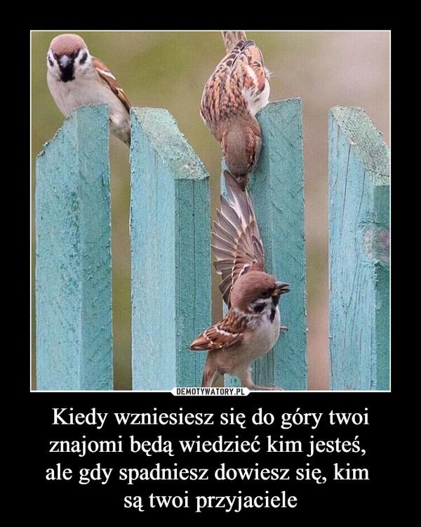 Kiedy wzniesiesz się do góry twoi znajomi będą wiedzieć kim jesteś, ale gdy spadniesz dowiesz się, kim są twoi przyjaciele –