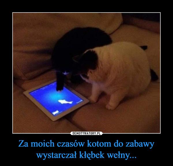Za moich czasów kotom do zabawy wystarczał kłębek wełny... –