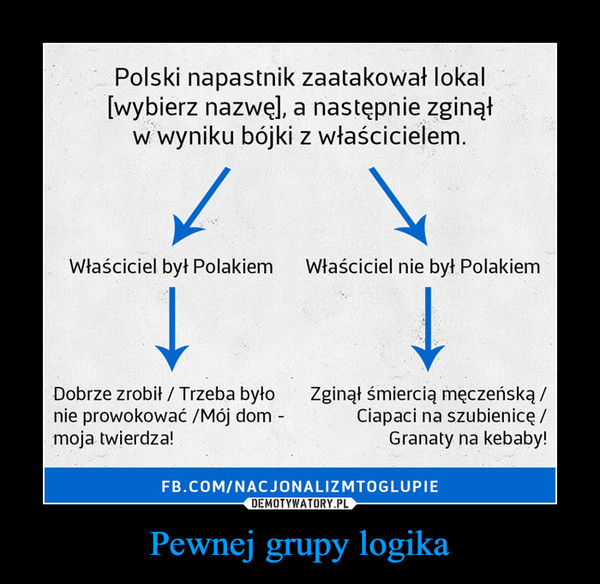Pewnej grupy logika –