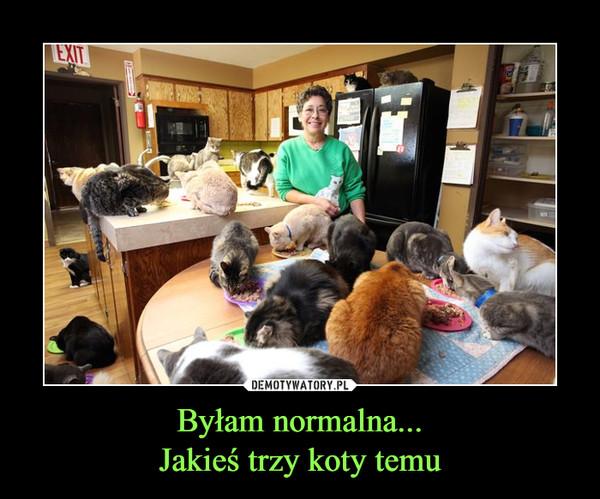 Byłam normalna...Jakieś trzy koty temu –