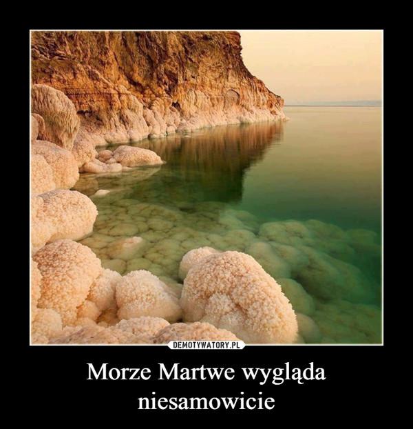 Morze Martwe wygląda niesamowicie –