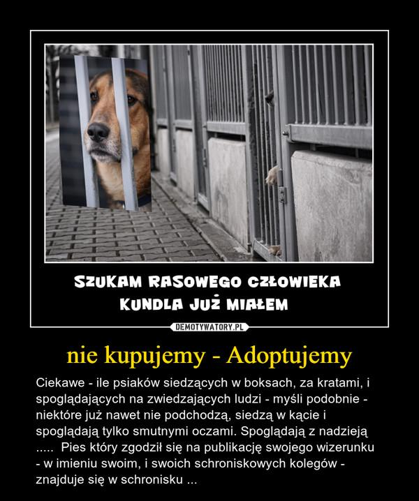 nie kupujemy - Adoptujemy – Ciekawe - ile psiaków siedzących w boksach, za kratami, i spoglądających na zwiedzających ludzi - myśli podobnie -  niektóre już nawet nie podchodzą, siedzą w kącie i spoglądają tylko smutnymi oczami. Spoglądają z nadzieją  .....  Pies który zgodził się na publikację swojego wizerunku - w imieniu swoim, i swoich schroniskowych kolegów -  znajduje się w schronisku ...