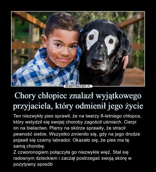 Chory chłopiec znalazł wyjątkowego przyjaciela, który odmienił jego życie