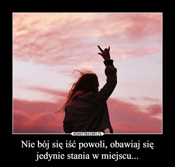 Nie bój się iść powoli, obawiaj się jedynie stania w miejscu... –