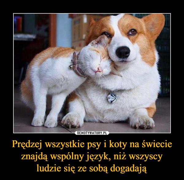 Prędzej wszystkie psy i koty na świecie znajdą wspólny język, niż wszyscy ludzie się ze sobą dogadają –