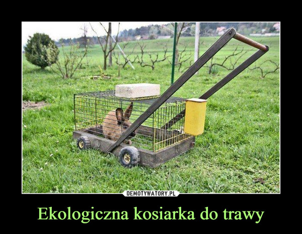 Ekologiczna kosiarka do trawy –