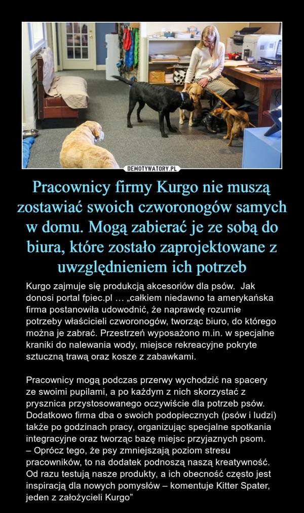 """Pracownicy firmy Kurgo nie muszą zostawiać swoich czworonogów samych w domu. Mogą zabierać je ze sobą do biura, które zostało zaprojektowane z uwzględnieniem ich potrzeb – Kurgo zajmuje się produkcją akcesoriów dla psów.  Jak donosi portal fpiec.pl … """"całkiem niedawno ta amerykańska firma postanowiła udowodnić, że naprawdę rozumie potrzeby właścicieli czworonogów, tworząc biuro, do którego można je zabrać. Przestrzeń wyposażono m.in. w specjalne kraniki do nalewania wody, miejsce rekreacyjne pokryte sztuczną trawą oraz kosze z zabawkami.Pracownicy mogą podczas przerwy wychodzić na spacery ze swoimi pupilami, a po każdym z nich skorzystać z prysznica przystosowanego oczywiście dla potrzeb psów. Dodatkowo firma dba o swoich podopiecznych (psów i ludzi) także po godzinach pracy, organizując specjalne spotkania integracyjne oraz tworząc bazę miejsc przyjaznych psom.– Oprócz tego, że psy zmniejszają poziom stresu pracowników, to na dodatek podnoszą naszą kreatywność. Od razu testują nasze produkty, a ich obecność często jest inspiracją dla nowych pomysłów – komentuje Kitter Spater, jeden z założycieli Kurgo"""""""
