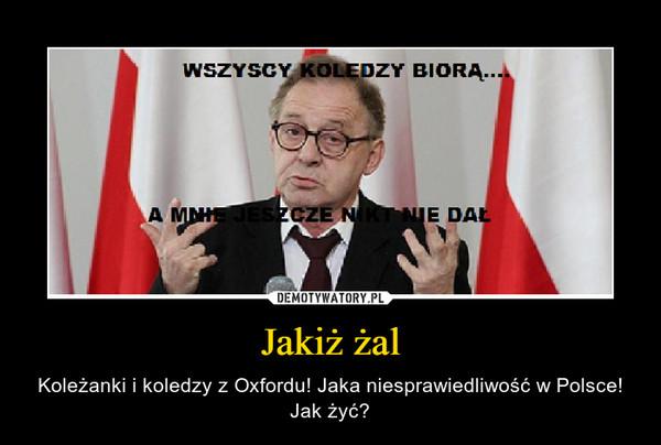 Jakiż żal – Koleżanki i koledzy z Oxfordu! Jaka niesprawiedliwość w Polsce! Jak żyć?