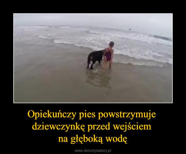 Opiekuńczy pies powstrzymuje dziewczynkę przed wejściem na głęboką wodę –