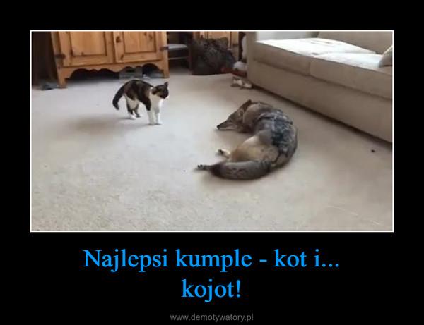 Najlepsi kumple - kot i...kojot! –