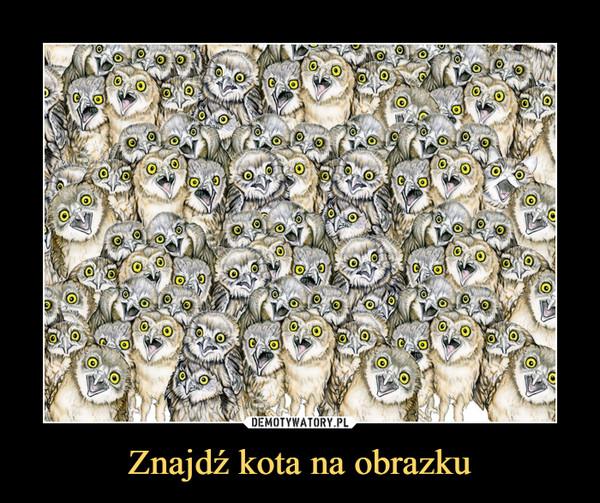 Znajdź kota na obrazku –