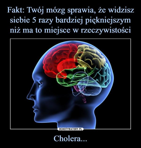 Cholera... –