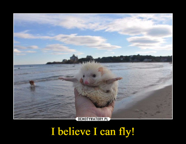 I believe I can fly! –